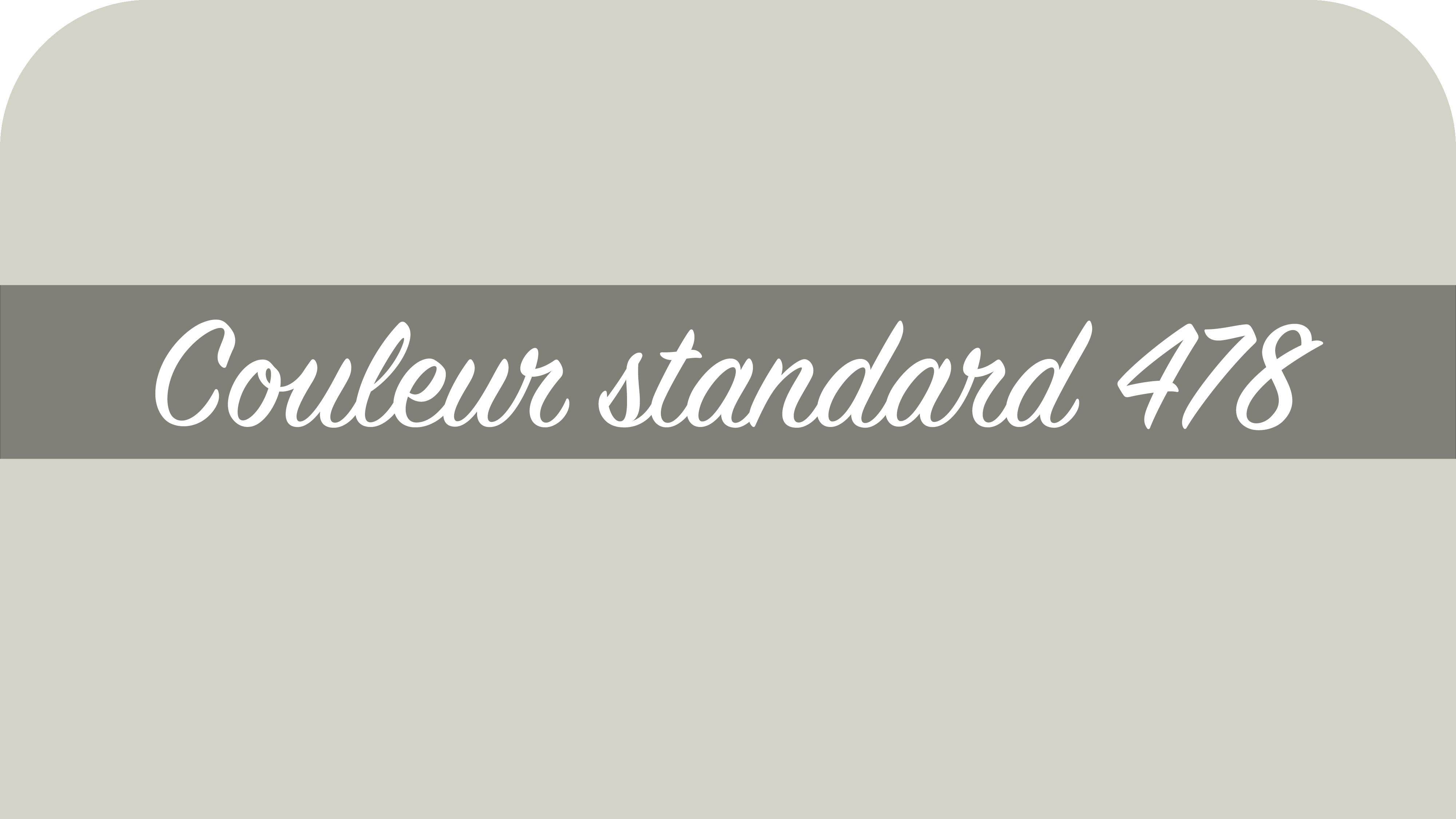 couleur-standard-478